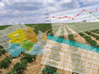 Elaboration of economic analyses from selected fields of agricultural production